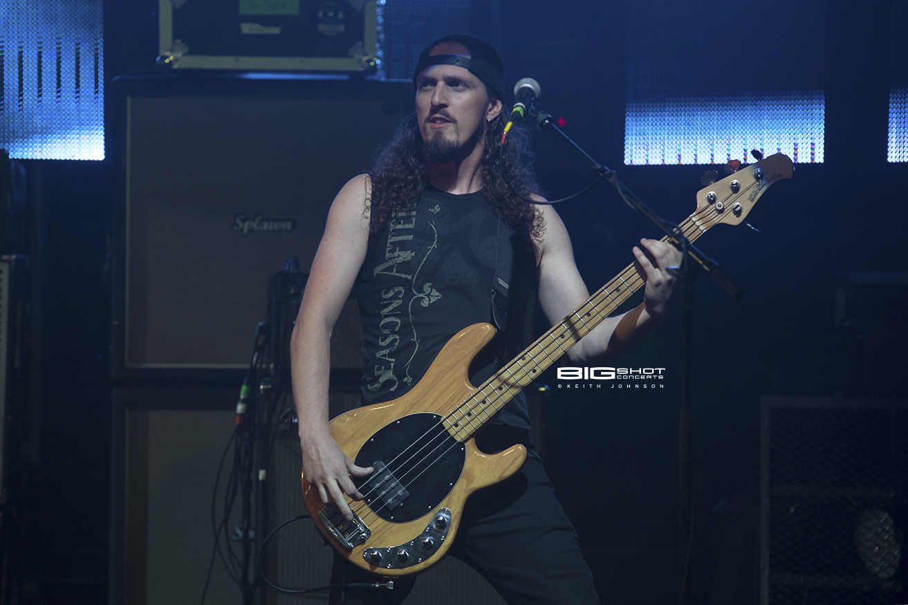 Photo of Adelitas Way Bass Player