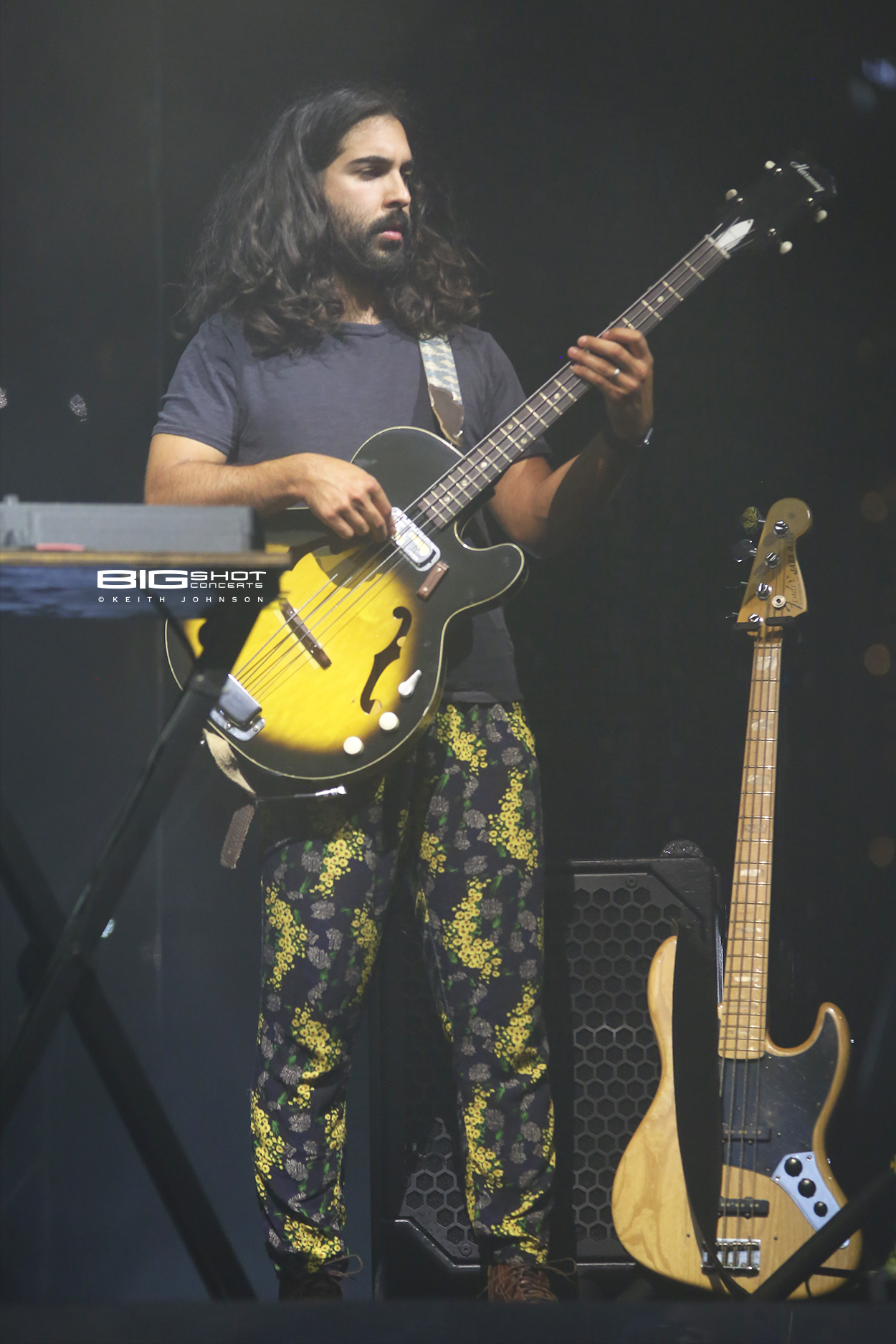 Young the Giant Bass Player