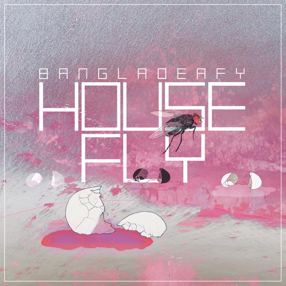 BANGLADEAFY Housefly
