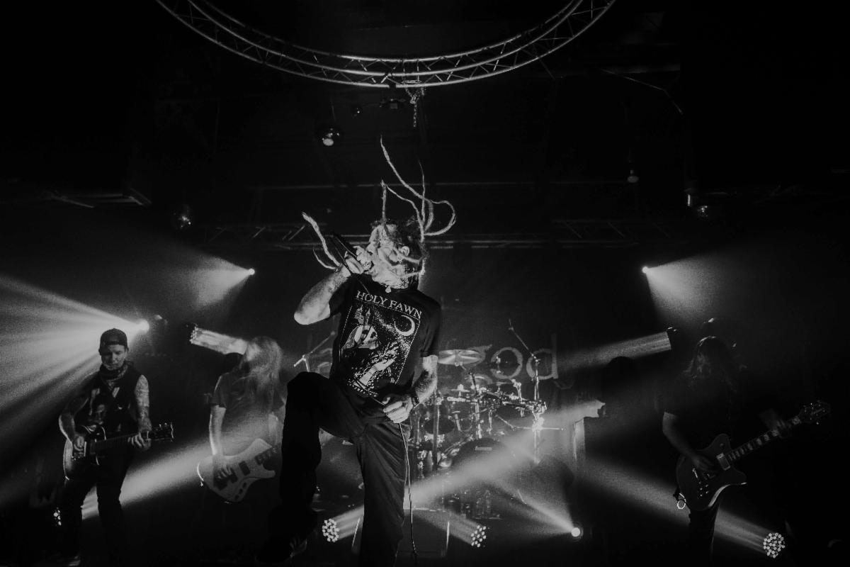 Lamb of God Livestream
